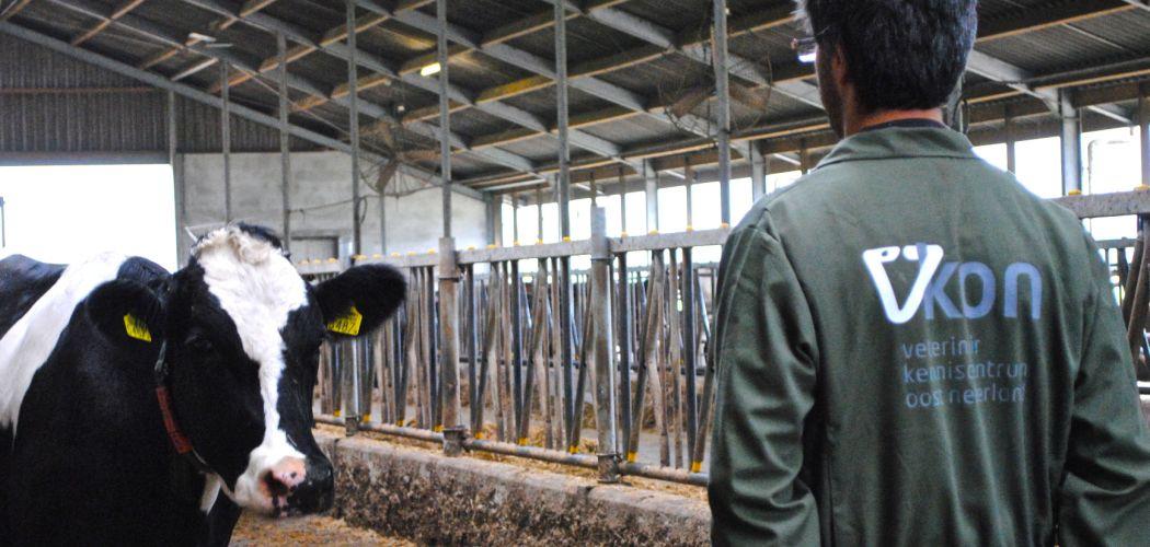 Ontwikkeling veterinair metabolisme systeem