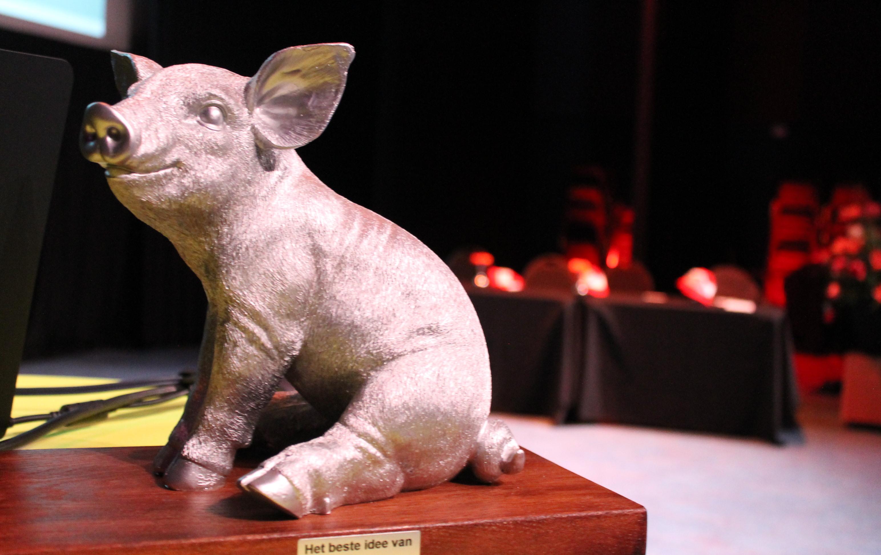 Het beste idee van varkensland 2017